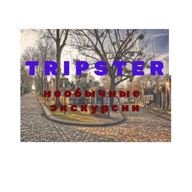 Как не ошибиться с выбором и найти уникальную экскурсию? Все ответы у Tripster.
